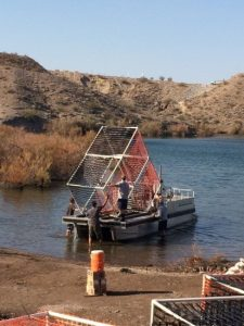 PVC Habitat Structure being loaded onto the barge by COYOTE kids and AZGFD biologists