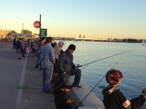Last Years Annual Bring Back the Trout at Tempe Town Lake